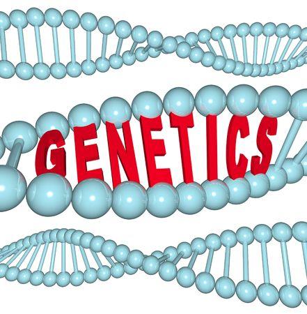 genetica: La parola genetica all'interno di un filamento di DNA