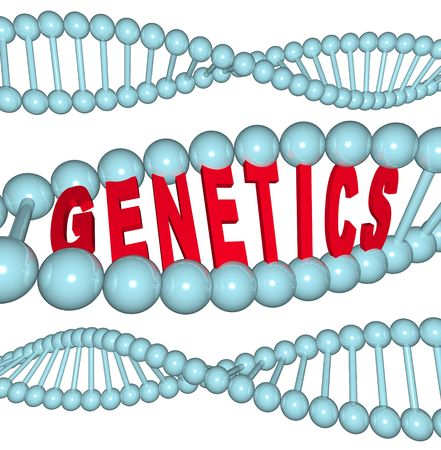 dna strand: The word Genetics inside a DNA strand Stock Photo
