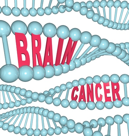 referred: An illustrated DNA strand with the words Brain Cancer embedded in the chain, symbolizing the disease also referred to as glioblastoma multiform, anaplastic glioma, astrocytoma, and oligodendroglioma