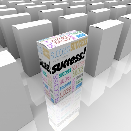 retailing: Many boxes on a store shelf, one with the word Success symbolizing a quick solution to a problem and instant victory over the competition Stock Photo