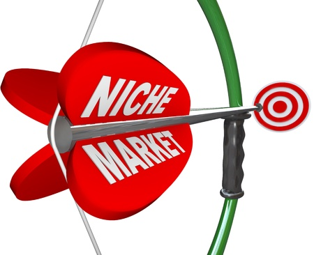 needed: A bow and arrow with the words Niche Market and aiming at a red bulls-eye target, illustrating the pintpoint precision and focus needed to hone in on a specific market or audience Stock Photo