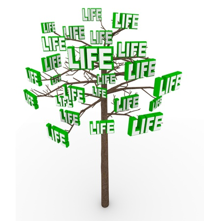 instances: A tree growing many instances of the word Life symbolizing the growth and spreading of life in the modern world Stock Photo