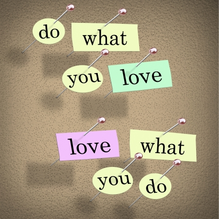 Pieces of paper each containing a word pinned to a cork board reading Do What You Love, Love What You Do - advice for a successful career or job that you will enjoy Stock Photo - 11252513