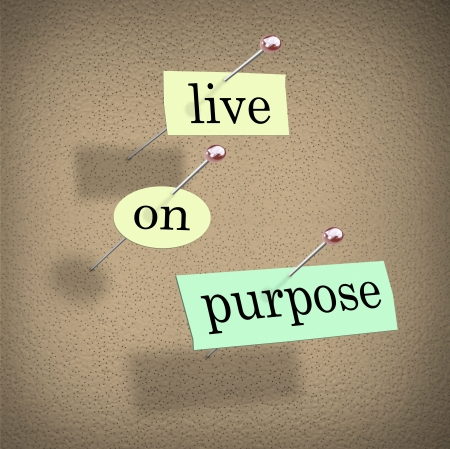 The words Live on Purpose cut out on pieces of paper and pinned to a bulletin board to remind you to live a determined, driven, purpose-filled life photo