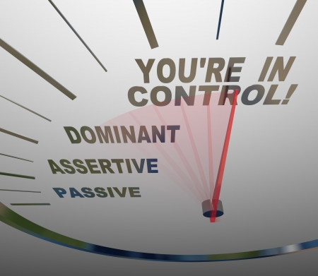 self confident: A speedometer with needle pointing to the words You