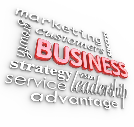 strategize: The word Business surrounded by management and organization concepts such as leadership, marketing, strategy, vision, growth, success, advantage and more as an idea background Stock Photo