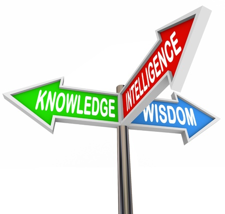 understand: Three colorful arrow signs reading Knowledge, Intelligence and Wisdom offering direction and information to provide answers and advice in your search for facts and understanding