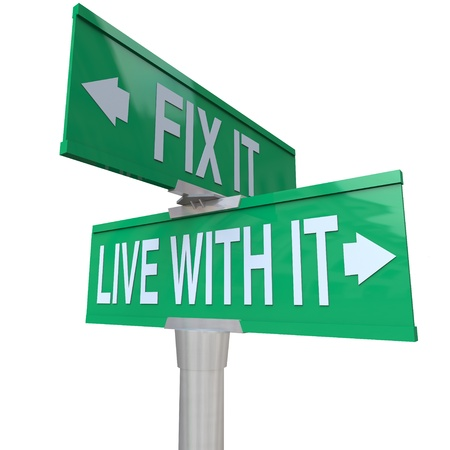 Green two-way street sign pointing to Fix It or Live With It Stock Photo - 14038608