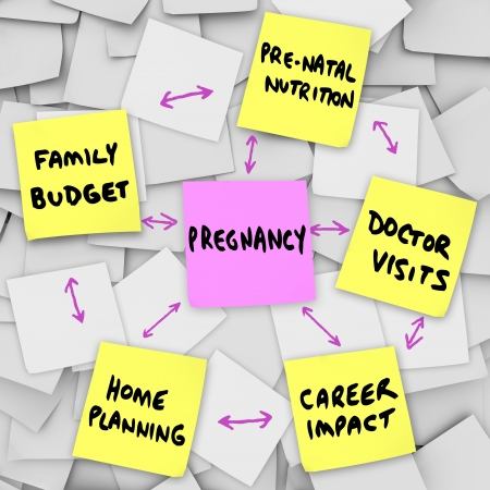 worrying: The word pregnancy on a pink sticky note surrounded by words describing important concerns related to being pregnant: family budget, home planning, pre-natal nutrition, doctor visits and career impact Stock Photo