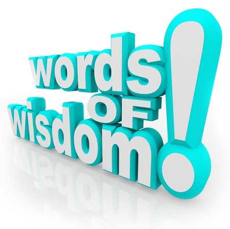 Words of Wisdom 3d words on white background symbolizing advice, information, communication, and sharing of tips and guidance based on experience
