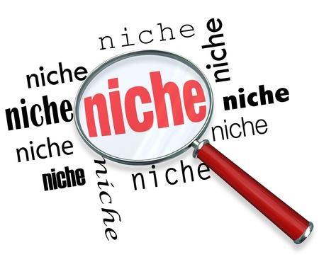 conclusion: Una lupa flotando sobre varios casos del nicho palabra, que simboliza la comercialización específica de pequeños grupos demográficos Foto de archivo