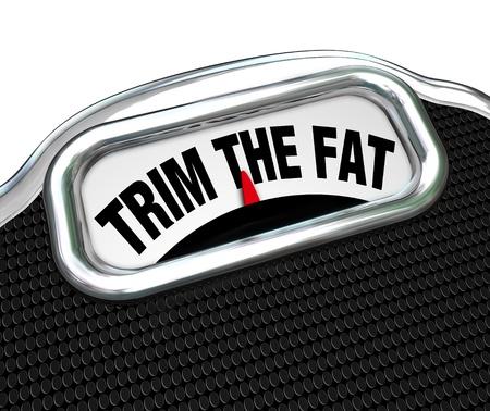 weight loss plan: Le parole tagliare il grasso su una scala, rappresenta la necessit� di dieta e perdere peso o per stringere il vostro budget e ridurre i costi durante i periodi economici o finanziari difficili
