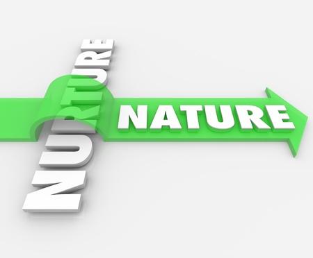 genes: La palabra naturaleza en una flecha saltando sobre el t�rmino Nurture para simbolizar c�mo su c�digo gen�tico tiene prioridad sobre un entorno e influencias sociedad Foto de archivo