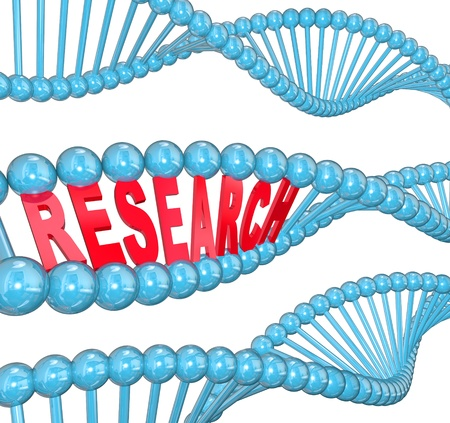 The word Research in red letters hidden within a blue DNA strand to illustrate medical studies in a laboratory for finding a cure to a disease such as cancer Stock Photo - 19421092