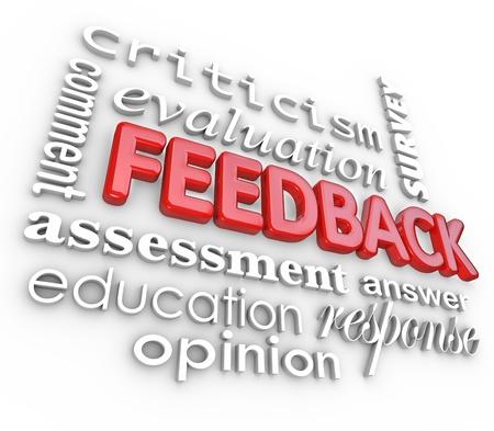Een 3d woordcollage gericht op het woord feedback en andere termen als beoordeling, evaluatie, commentaar, respons, kritiek, onderzoek en antwoord