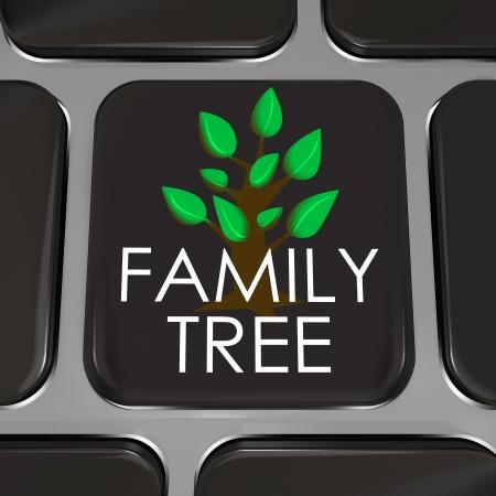 przodek: Klucz klawiatury komputera z napisem Family Tree i obraz symbolizować badania rekordy-przodków w internetowej bazie danych