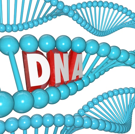 heredity: A strand of DNA with the letters or word within it to illustrate genetics, heredity and medical research