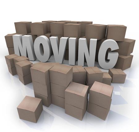 輸入販売人の顧客に売ることは他の国からの製品の出荷の段ボール箱の倉庫の単語