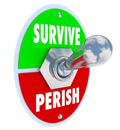 dauerhaft: Survive vs Perish Worte auf einen Kippschalter, um die Haltung, Wunsch oder Wahl zu beharren, zu ertragen und gewinnen in einem Wettbewerb, Herausforderung, Probleme oder Schwierigkeiten symbolisieren Lizenzfreie Bilder