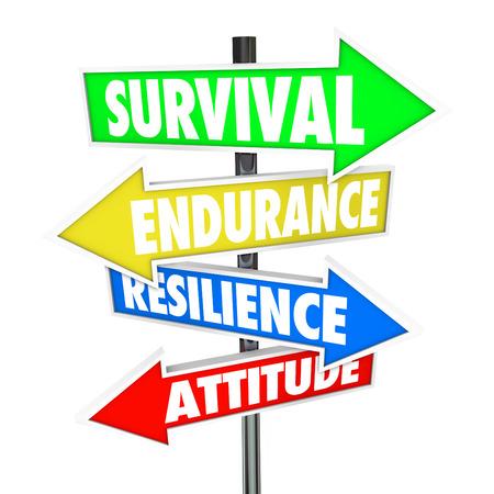 Survival, Endurance, Veerkracht en Attitude woorden op kleurrijke borden met pijlen die naar aanwijzingen voor het overwinnen van een probleem, probleem of uitdaging Stockfoto