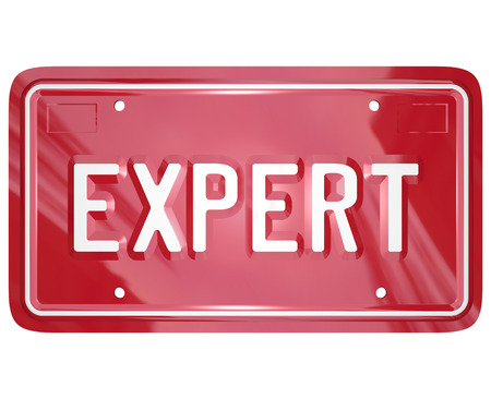skillset: Expert word on red car license plate to illustrate the skills and expertise of an automotive repair professional such as a mechanic, technician or engineer