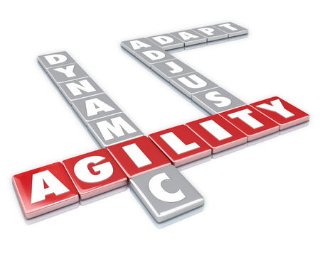 quickly: The words Agility, Dynamic, Adjust and Adapt to illustrate the ability to quickly change to grow, survive and thrive in business or life Stock Photo