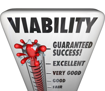 viability: Viability measurement words on a thermometer Stock Photo