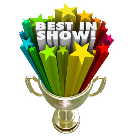talent show: Best in Show words and stars shooting out of a gold trophy Stock Photo