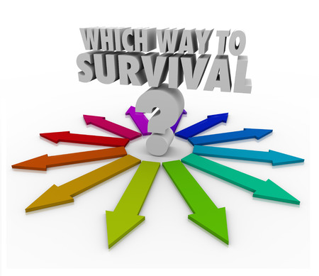 perseverar: Qu� manera a la pregunta de la supervivencia, y muchas flechas de colores que apuntan en la direcci�n de sobrevivir a un desaf�o, la seguridad y la seguridad Foto de archivo