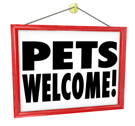 pet store advertising: Pets Welcome, allowed or permitted in a store, building or other place as advertised on a sign hanging as an invitation Stock Photo