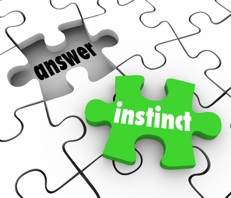 Instinct word on a green puzzle piece to find solution to problem with gut feeling or intuition photo