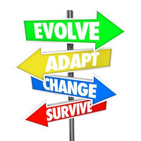 evolucion: Evolucionar, adaptarse, cambiar y sobrevivir en cuatro signos de flecha apuntando una estrategia de direcci�n o gesti�n para su empresa a someterse a la evoluci�n y la adaptaci�n a crecer y ganar