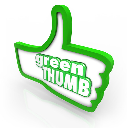 green thumb: Green Thumb words in a thumbs up symbol to illustrate the hobby or profession of gardening, cultivating or farming