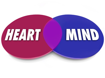 conflicted: Heart and Mind words on venn diagram circles to illustrate wants and desires that balance the logical and emotional needs Stock Photo
