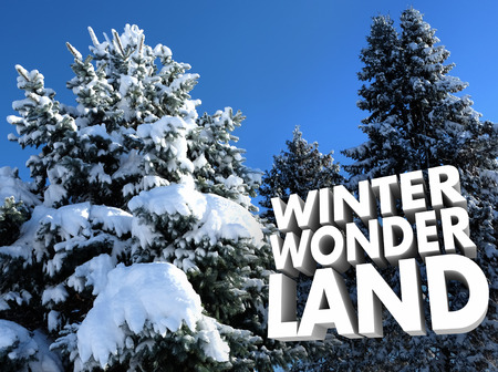 trees seasonal: Winter Wonderland words near snow covered trees for outdoor or outside seasonal recreation