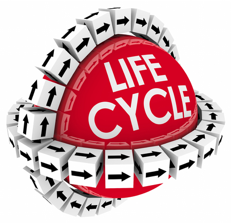 sequential: Lifecycle word on a sphere with cubes around it to illustrate a period of time or duration in the life of a product or system Stock Photo