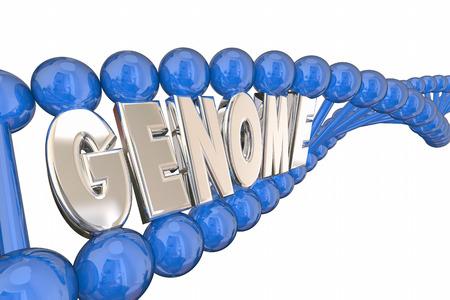 genetica: Genoma Illustrazione 3d Word filo del DNA Genetics Heredity