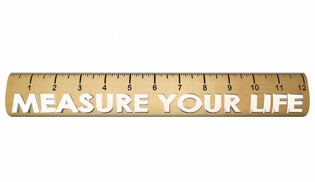 assess: Measure Your Life Happiness Satisfaction Ruler 3d Illustration
