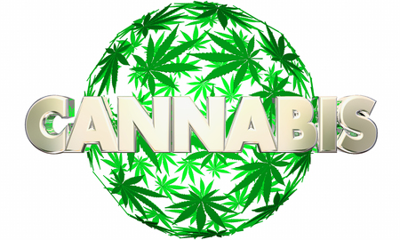 Cannabis Marijuana Leaves Sphere Pot Word 3d Illustration