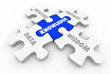 Knowledge Puzzle Pieces Data Analysis Insight Wisdom 3d Illustration Stock Photo