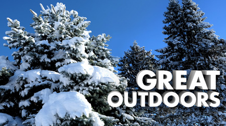covered: Great Outdoors Snow Covered Trees Outside Nature Words 3d Illustration Stock Photo