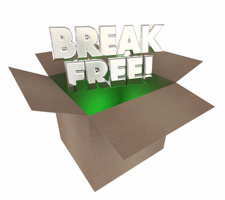 liberated: Break Free Liberate Yourself Cardboard Box Words 3d Illustration