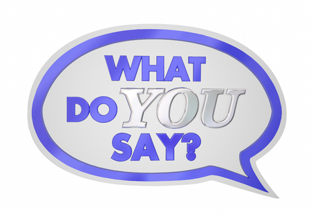 opinion: What Do You Say Speech Bubble Opinion Vote 3d Illustration