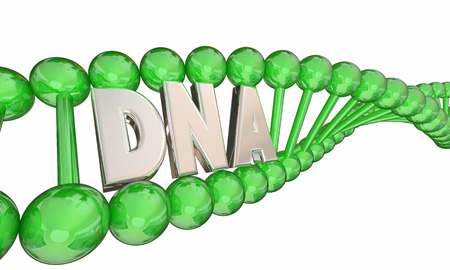 DNA Letters Word Strand Bio Medical Research 3d Illustration