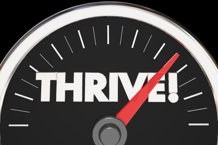 thrive: Thrive Word Speedometer Rise Succeed 3d Illustration Stock Photo