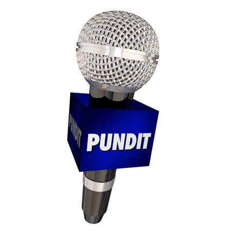 Pundit Expert Microphone Interview Show 3d Illustration