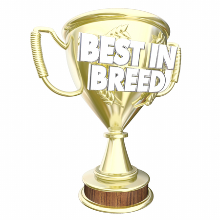 Best in Breed Trophy Award Class Prize Winner 3d Illustration