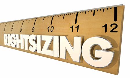 downsize: RIghtsizing Ruler Adjust Adapt Downsize Measure 3d Illustration