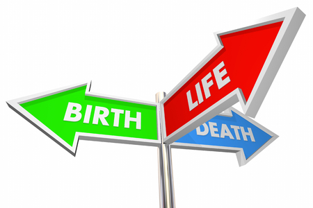 beginnings: Birth Life Death Three 3 Way Arrow Signs 3d Illustration