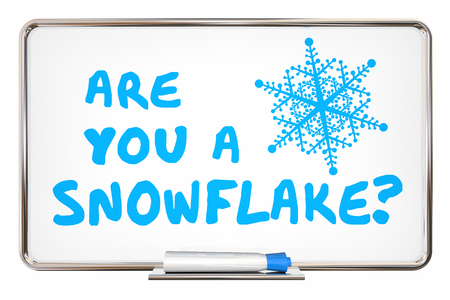 Are You a Snowflake Sensitive PC Fragile Millennial 3d Illustration